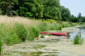 Canoe in the park