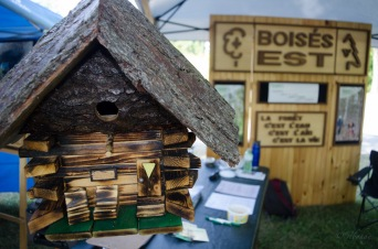 http://boisesest.ca/
