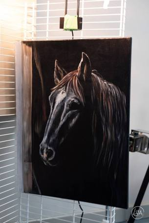Donation by artist Suzanne Bohay